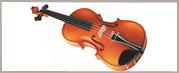 Violín, Viola, Cello y Contrabajo