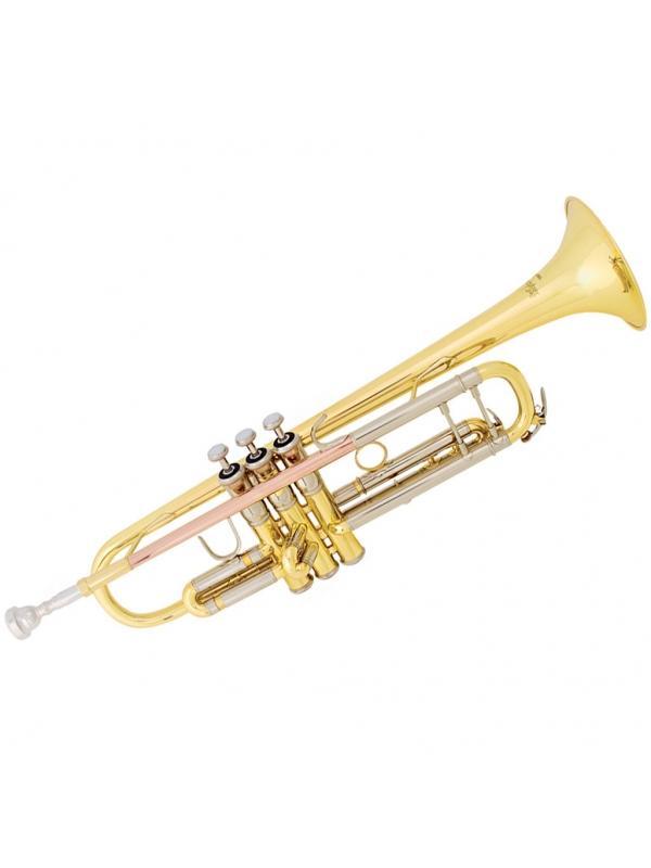 Trompeta TR500 Campana Grabada Lacada o Plateada - Trompeta Sib Bach Tr500 Pistones De Monel Plateada o Lacada